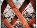 Vad finns på andra sidan staketet?