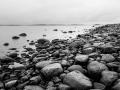 Naturreservatet Näsbokrok en våt januaridag