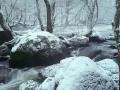 Snön börjar lägga sig
