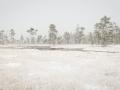 Den första snön vid fjället