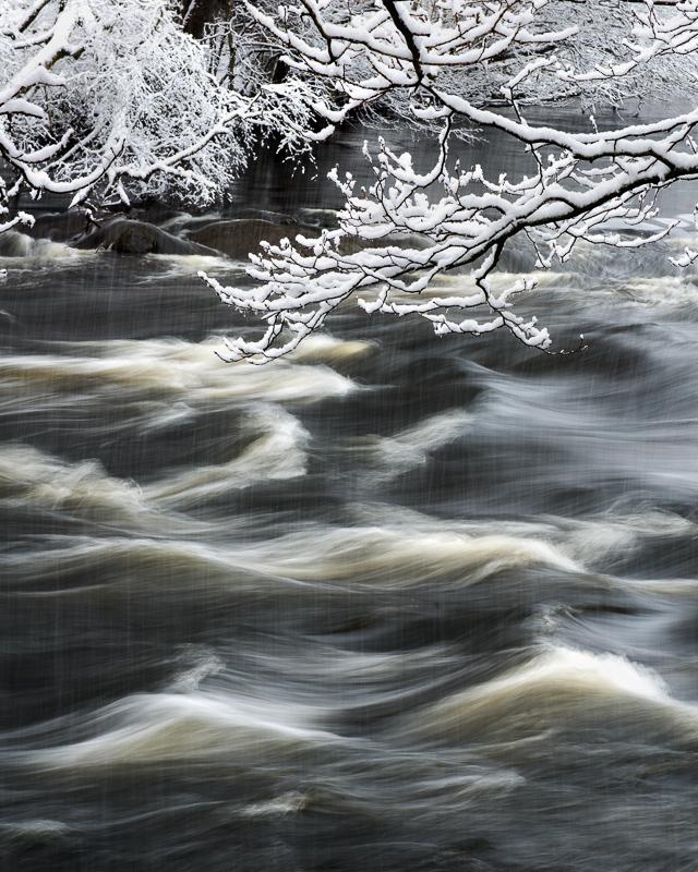 Grenar med snö och åns kalla vatten